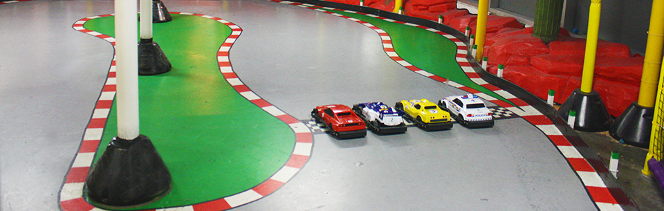 Crash Crawly's Mini Cars